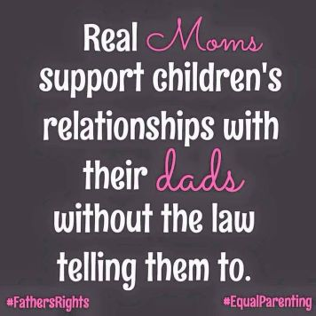 2b51bc58352237469845582752115f61--child-support-laws-child-proof